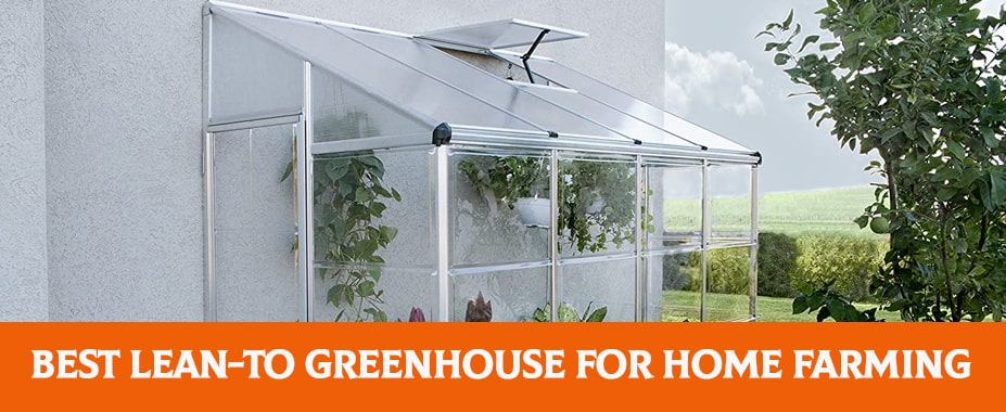 Best Lean-to Greenhouse 2021 – Reviews & Buyer's Guide