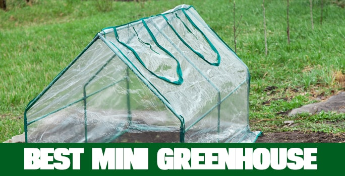 Best Mini Greenhouse In 2021 (Review & Buying Guide)